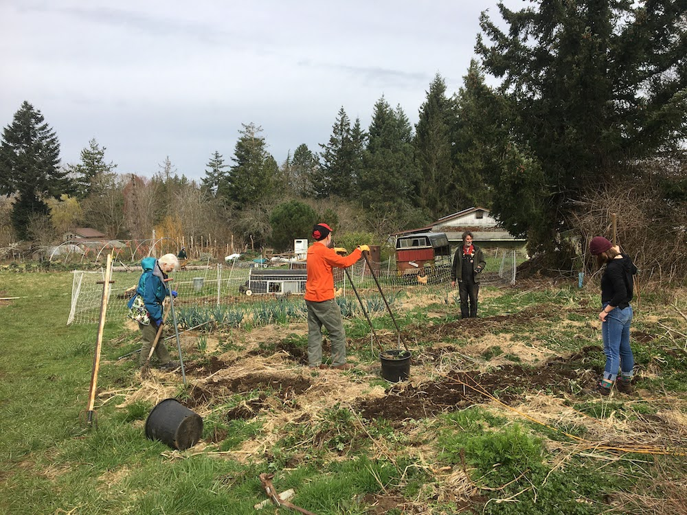 Seed Garden Work Party – April 15, 10-1